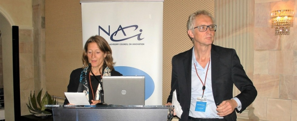 NACI Hosted a Workshop on the Performance Analysis of the National System of Innovation
